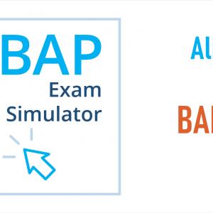CBAP Exam Simulator