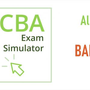 CCBA Exam Simulator